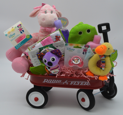 Baby Girl Radio Flyer Wagon