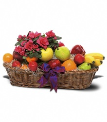 Fruit and Blooming from Bob's Gift Baskets